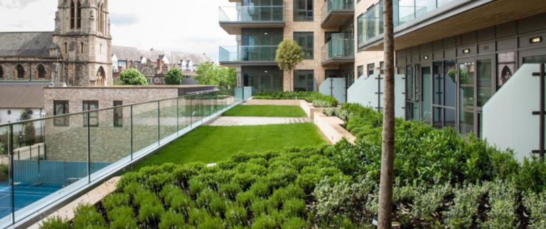 Roof gardens and green walls