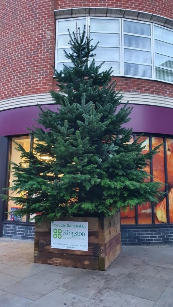 Christmas Tree on Whitton High Street London.